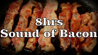 8hr the sound of bacon sleep sounds