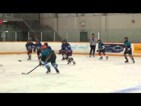 St. Sebastian jr hockey sharks 2015 tournament
