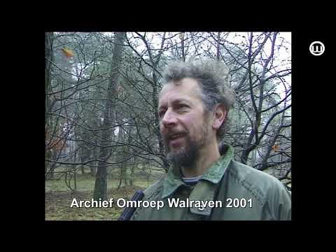 210319 Gevonden op onze Zolder Bomenringen in de bossen Herperduin-2001