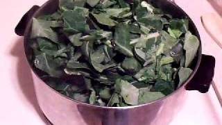 """Quick Cooks: Sprout's Style """"southern"""" Collard Greens"""