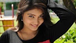 Telugu-Serial-Actress-Priyanka-Photos-in-Saree