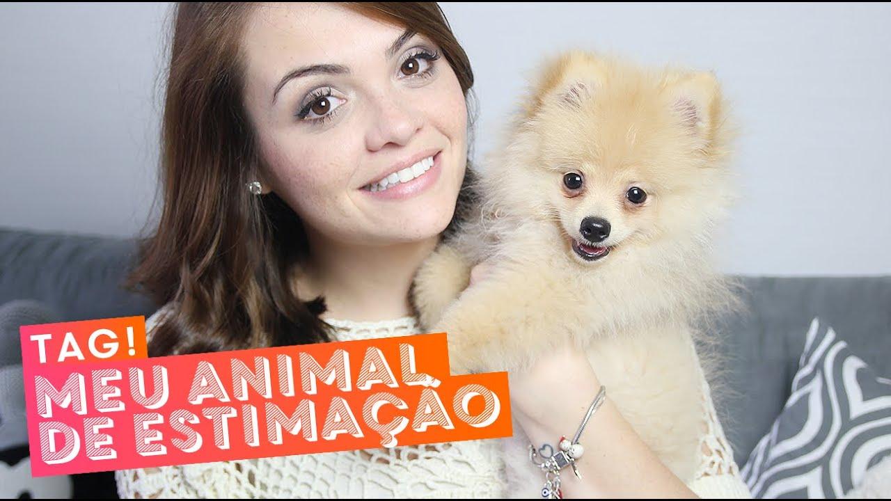 TAG: Meu animal de estimação, com o Cookie • Karol Pinheiro