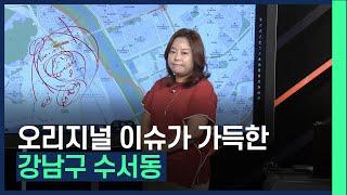 이슈 가득! 강남구 수서동 신동아아파트 향후 전망 / …