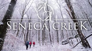 Seneca Creek Snowstorm 4K | Wiฑter Blizzard Camping & Hiking in West Virginia