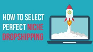 How to Find the Perfect and Most Profitable Niche for Your DropShipping Website Business 2018