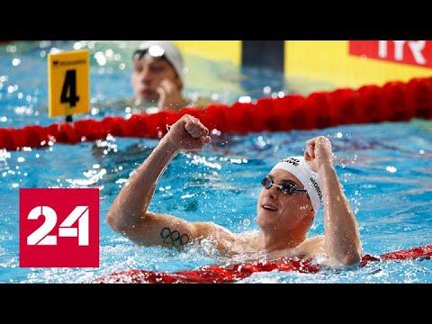Россия стала победителем медального зачета чемпионата Европы по плаванию - Россия 24