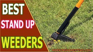 Top 5 Best Stand Up Weeders for 2018 [3-Claw & 4-Claw]