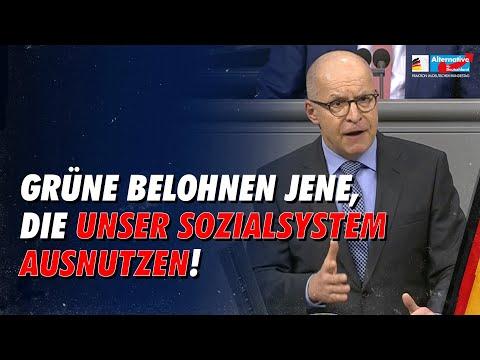 Grünen belohnen jene, die unser Sozialsystem ausnutzen! - Jörg Schneider - AfD-Fraktion im Bundestag