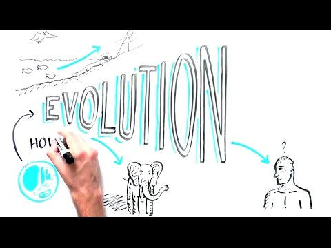 How We Evolved From Single Cell Organisms