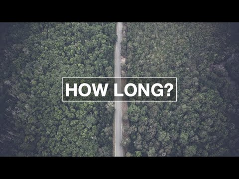 How Long (Nicky Chiswell)