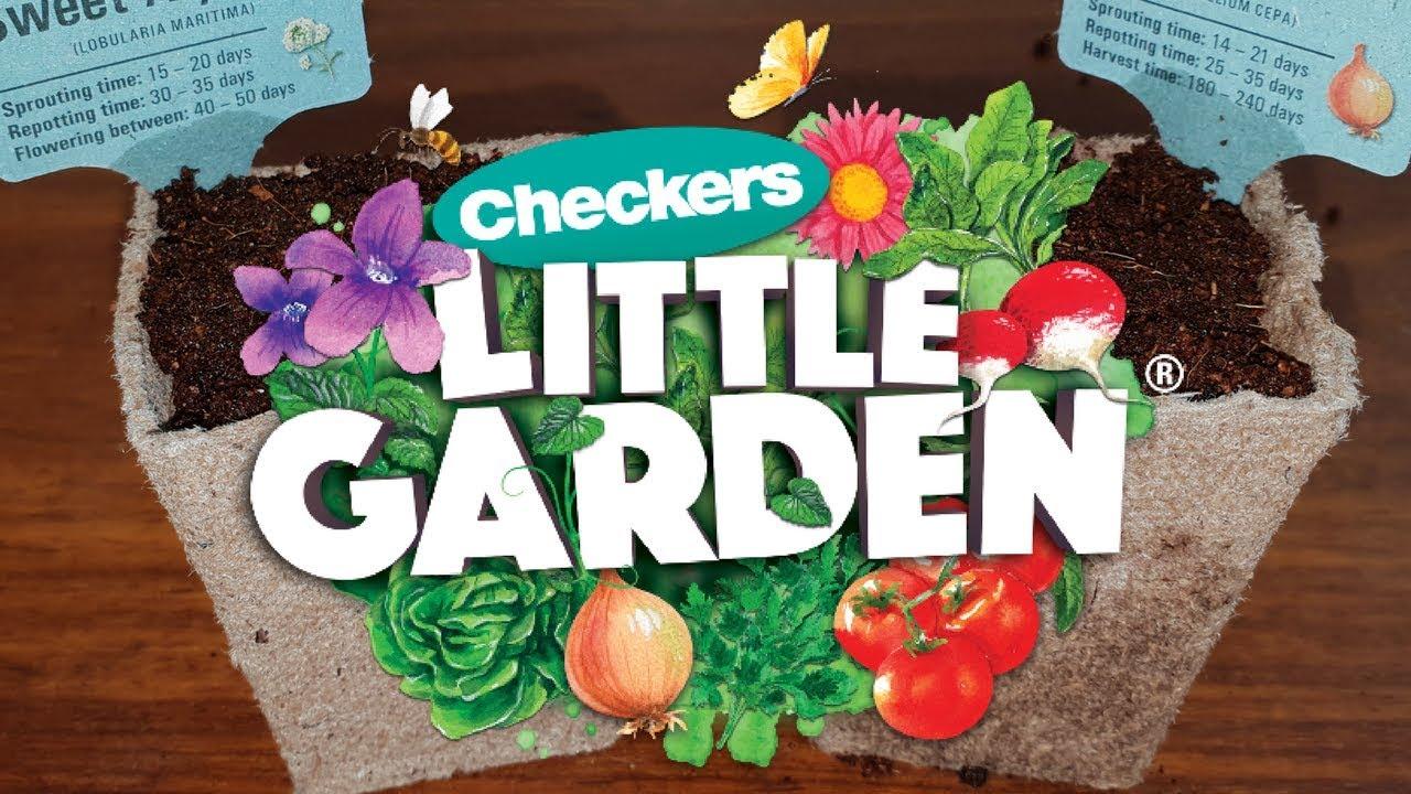 checkers little garden - Little Garden