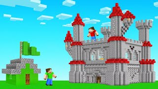 I BUILT A GIANT CASTLE in Jelly's Minecraft World!