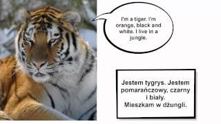 Animals / Zwierzęta po angielsku - My English Lekcja 11 - angielski dla dzieci