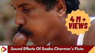 Sound Effects Of Snake Charmer