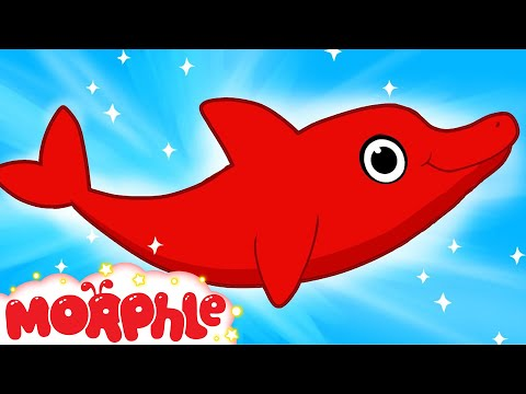 My Pet Dolphin - My Magic Pet Morphle Episode #36