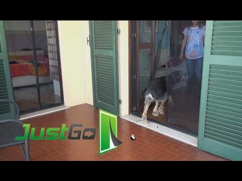 Justgo tende zanzariere magnetiche antizanzare per porte e - Zanzariere magnetiche per finestre ...