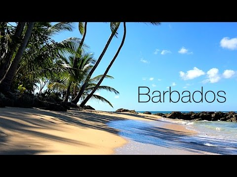 Barbados - from Dawn Until Sunset : The Crane, Bathsheba, Platinum Coast & Island Tour