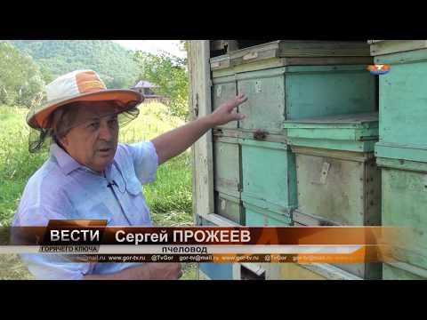 Пчеловодство и аграрный туризм