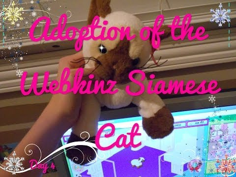 Adoption of the Webkinz Siamese Cat Day 4 {Winter Break}