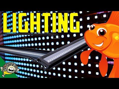 Planted Aquarium Light 101 Lighting