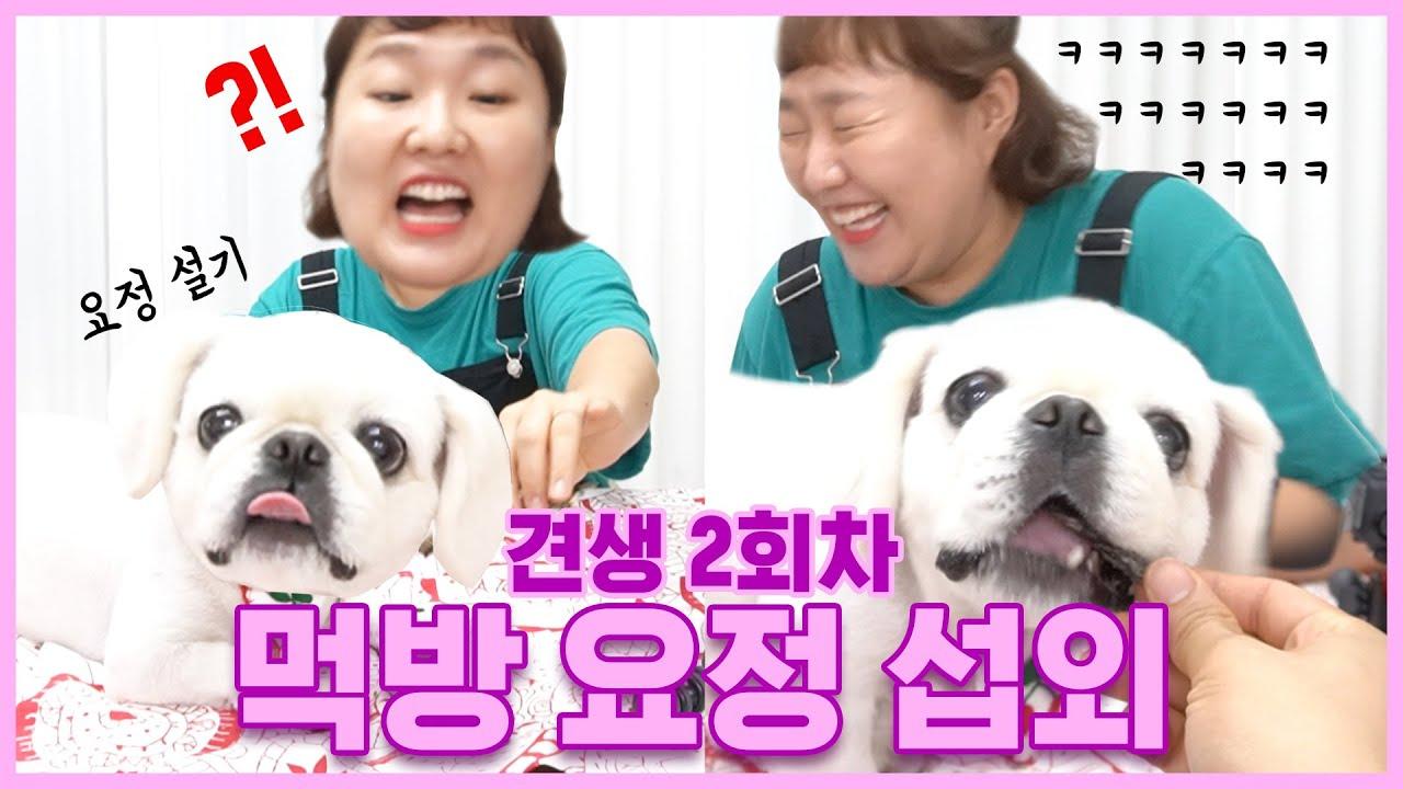 [Muk Bang] 다이어터들 클릭 금지 영상   이수지의 쀼티비 ep.39