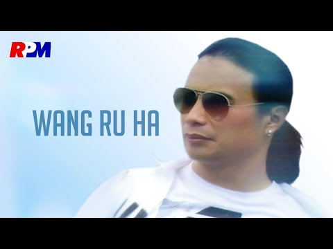 Wang Ru Hua - 多年以後 Duo Nian Yi Hou (Official Music Video)