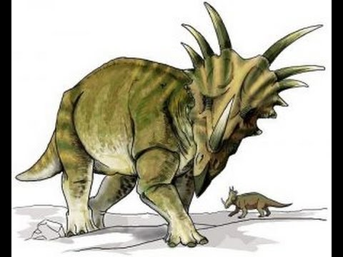 Lista De Dinosaurios Con Cuernos En La Cabeza Enciclopedia Sobre Dinosaurios Youtube They first appeared during the triassic period, between 243 and 233.23 million years ago. lista de dinosaurios con cuernos en la