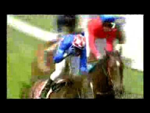 Makybe Diva's Melbourne Cups