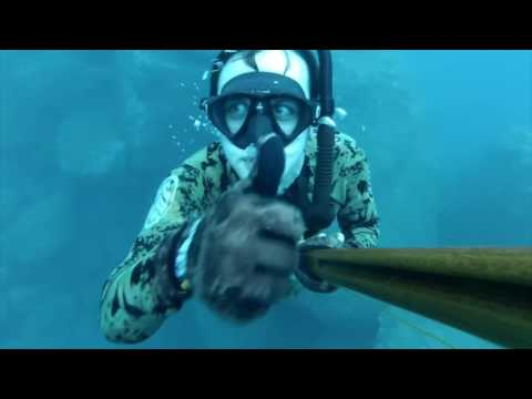 Best Spear Fishing Panama