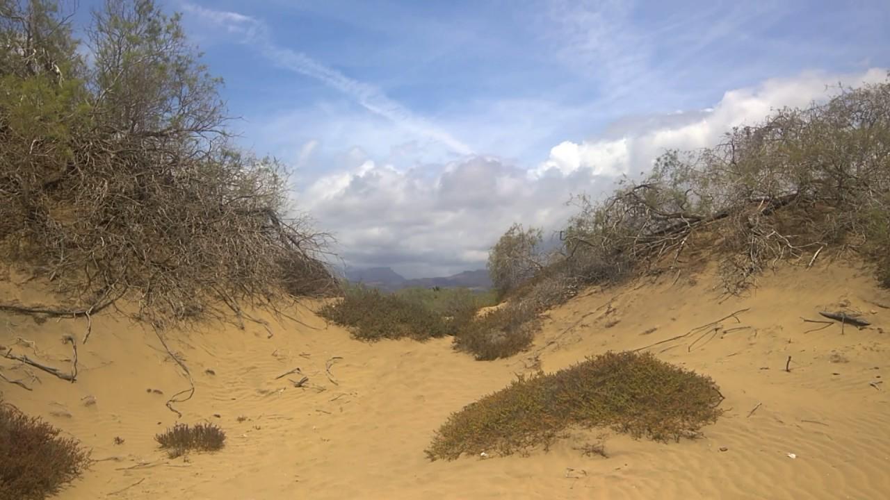 gran canaria sand dunes gay