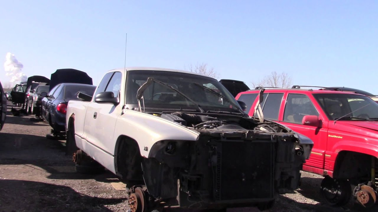 Dodge Truck Salvage Yards >> 1997 Dodge Dakota V8 4x4 5 Speed In The Junk Yard