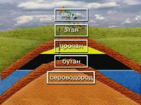 Основы разработки нефтяных и газовых месторождений