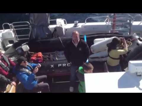 Orca3 Trip To St Kilda. Kilda Cruises