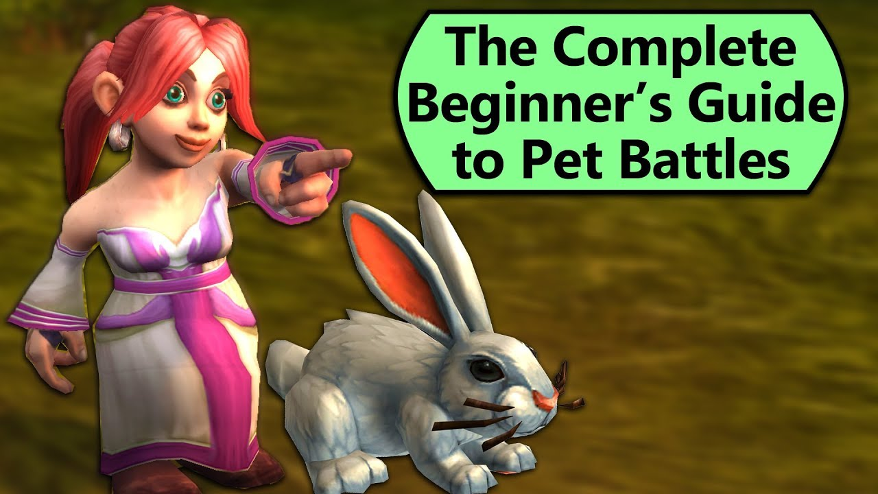 Pet Battling for Beginners – Ultimate Newbie Guide to Battle Pets
