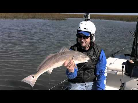 Redfish on fly Isle of Palms, SC Fish Call Charters