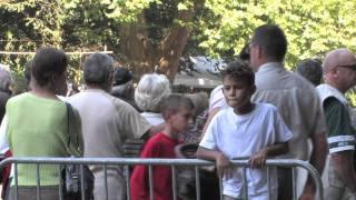 Bande annonce Fête du cheval Féricy 2011.mov
