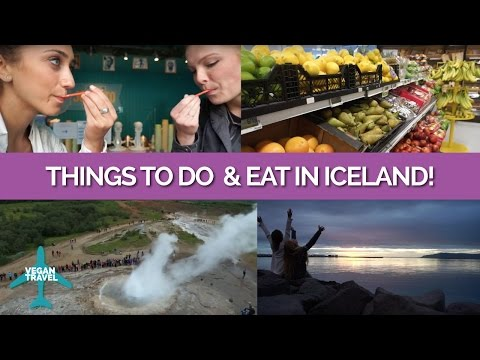 Things to Do & Vegan Food in Iceland!
