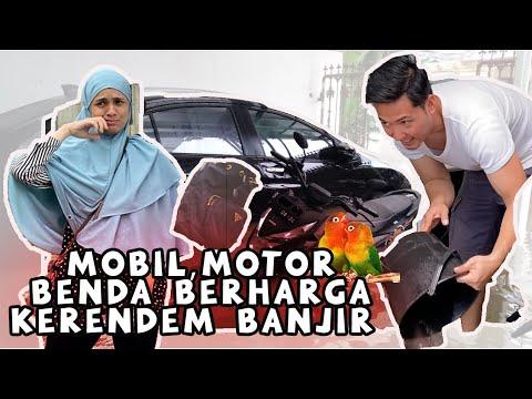 BANJIR JAKARTA - PAPANOS PANIK MIKIRIN BURUNG LOVEBIRD