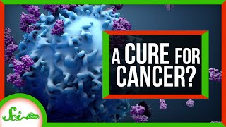 Scientists May Have Found a Way to Treat All Cancers... By Accident | SciShow News