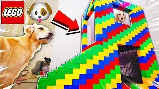 WORLD'S BIGGEST 2 STORY LEGO MANSION for PUPPY! (GIANT LEGO DOG HOUSE)