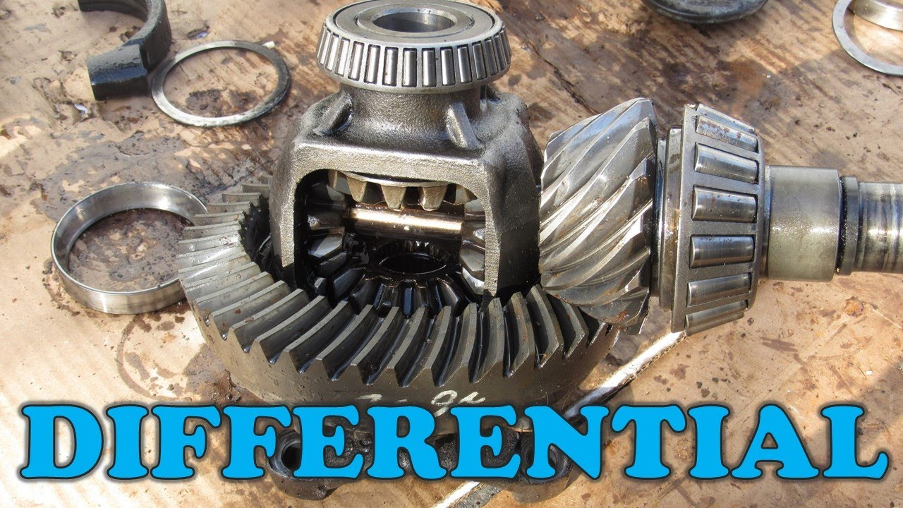 Download How a Differential Works