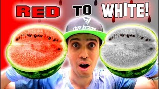 Can You Take The Color out of a Watermelon? Incredible Colorless Food Experiment!