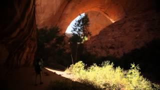 Andrew Bird - Echolocations: Canyon (Full Film)