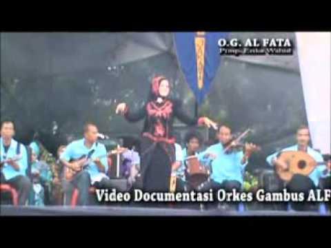 alfata orkes gambus