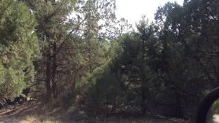 Купить ровный участок в окружении леса с видом на море и горы