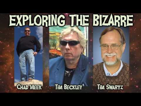 SECRETS OF TIME TRAVEL, UFOS IN THE DESERT, GEORGE VAN TASSELL AND THE INTEGRATRON