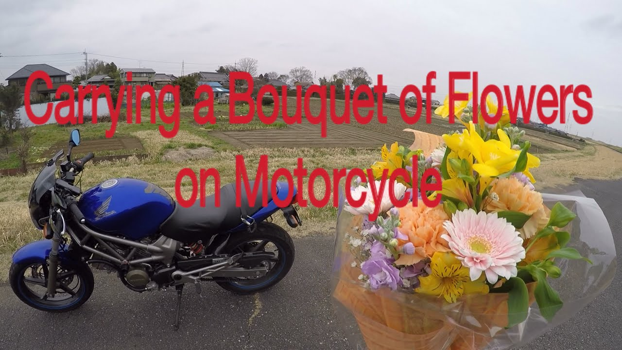 Carrying A Bouquet Of Flowers On Motorcycle Motovlog#2