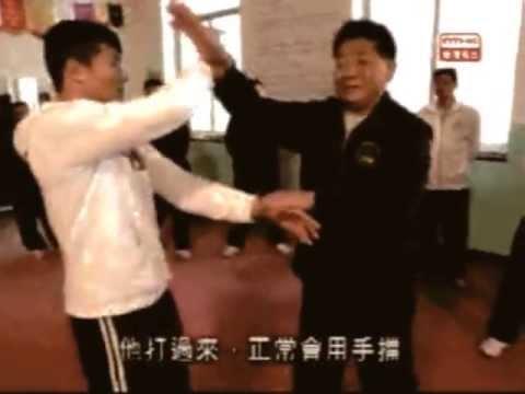 Tang Lang Pu Chan  -  Mantis catches the Cicada Applications