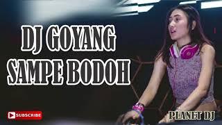 DJ GOYANG SAMPAI BODOH