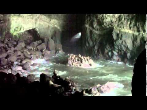Sea Lion Caves Oregon Coast